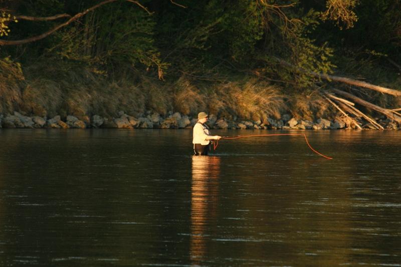 fischer stilleben 290410