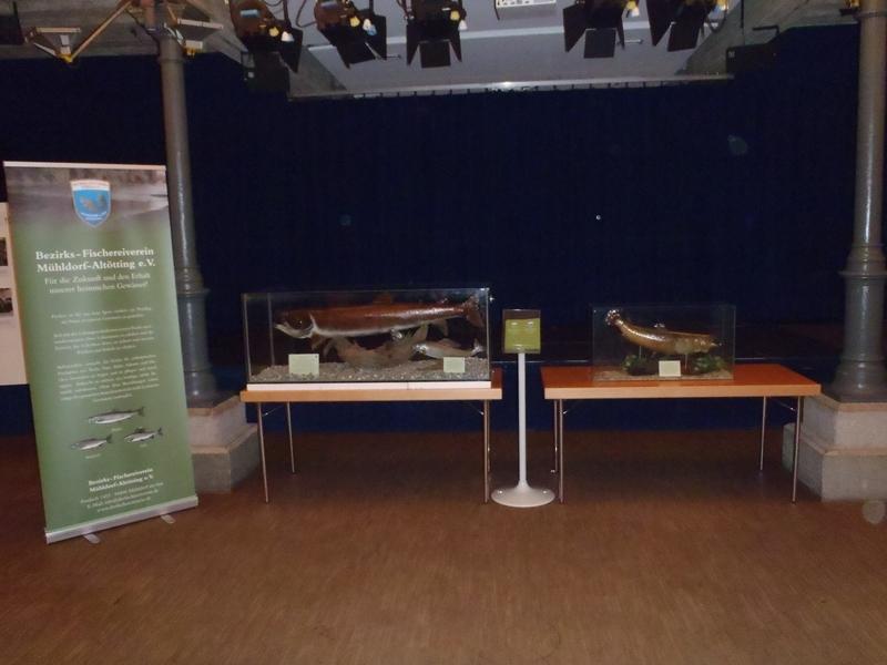 Ausstellung_II_140711